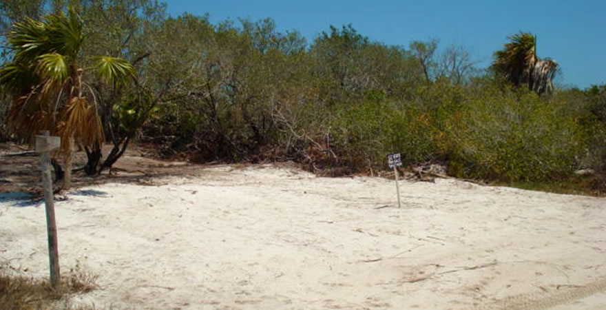 Real Estate Holbox, Lands for Sale in Holbox
